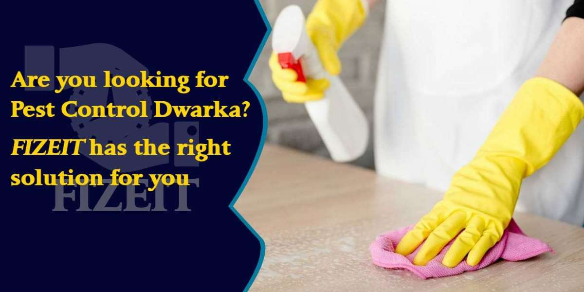 Pest Control Dwarka   Pest Control Service in Dwarka at low affordable price