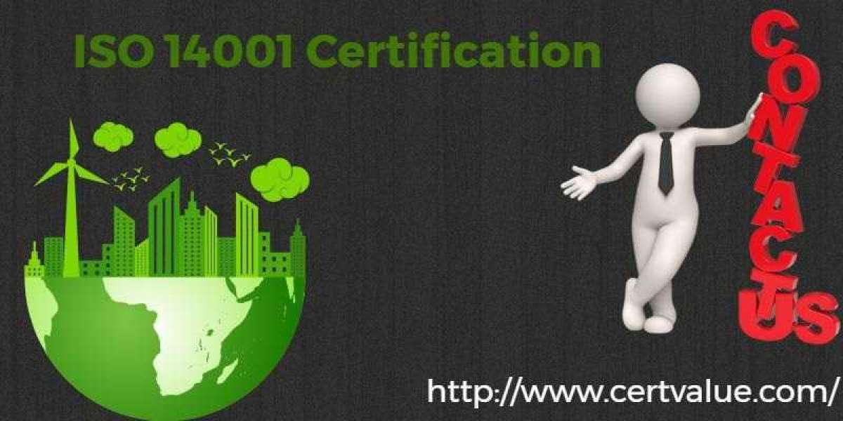 Examples of ISO 14001:2015 certification in Iraq objectives based on the different organization sizes