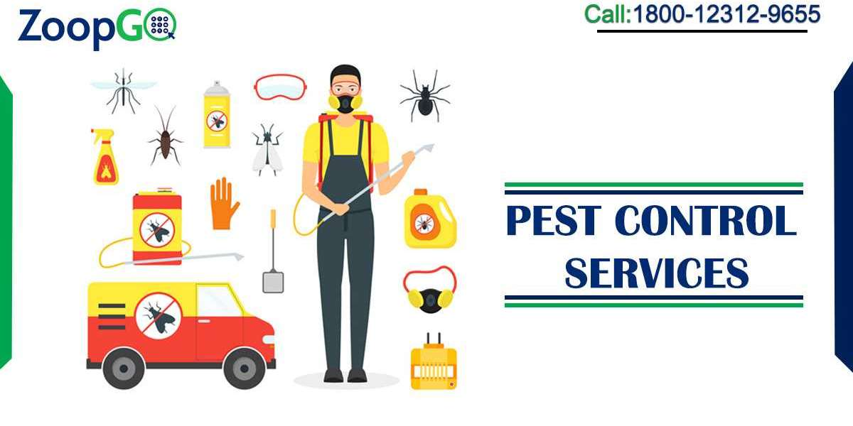Types of Pest Control Services to Know Before Contacting Professional Pest Control Service Providers
